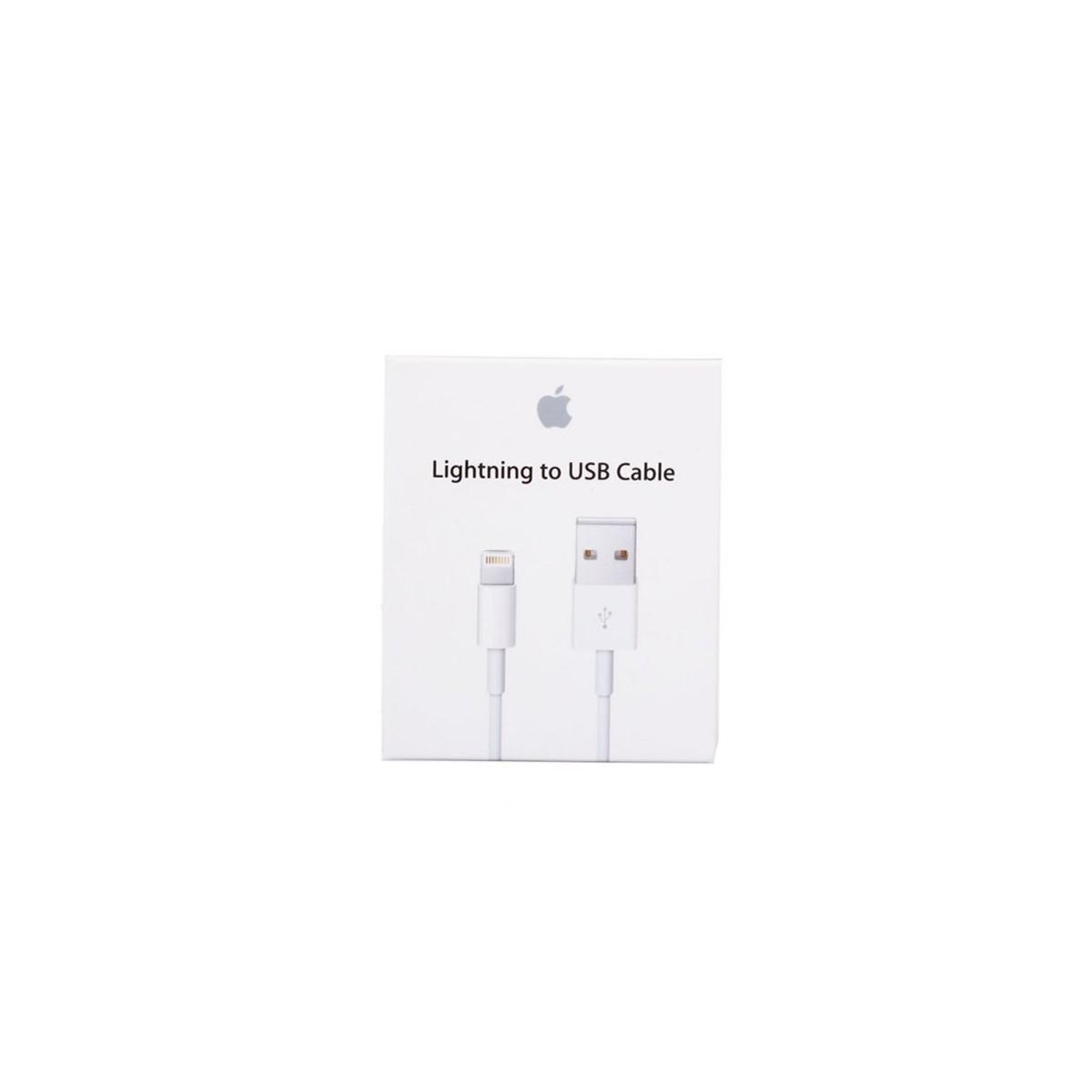 Câble USB vers Lightning Blanc 1 mètre - Apple